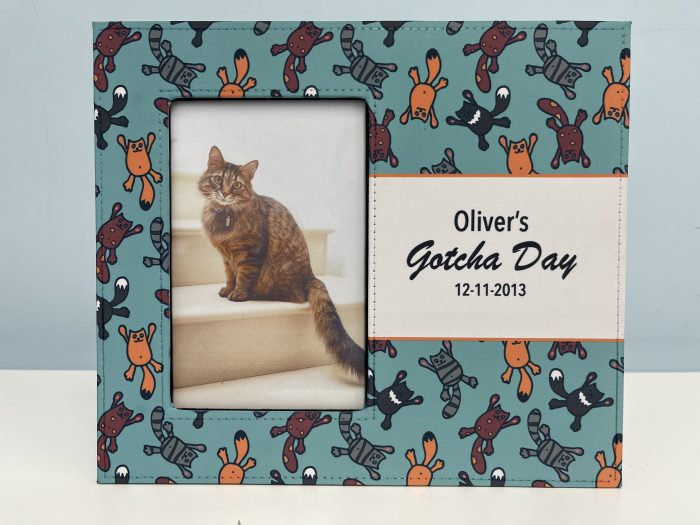 Gotcha Day Picture Frame